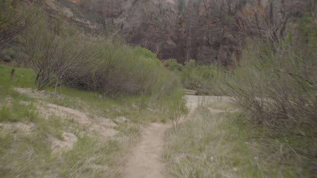 dirt trail, brush and mountains - människolem bildbanksvideor och videomaterial från bakom kulisserna