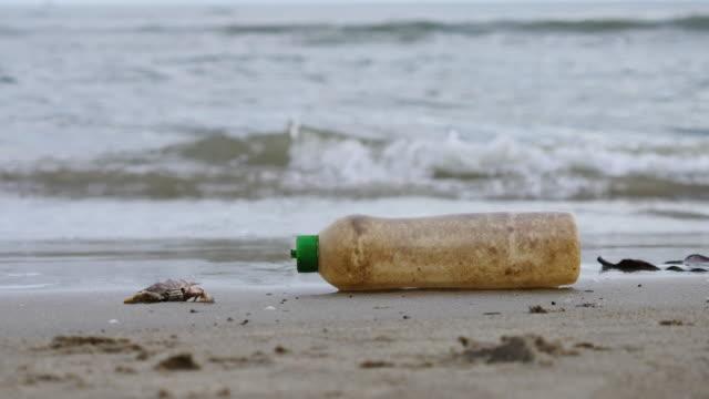 vídeos de stock e filmes b-roll de dirty bottle on beach - depósito de lixo