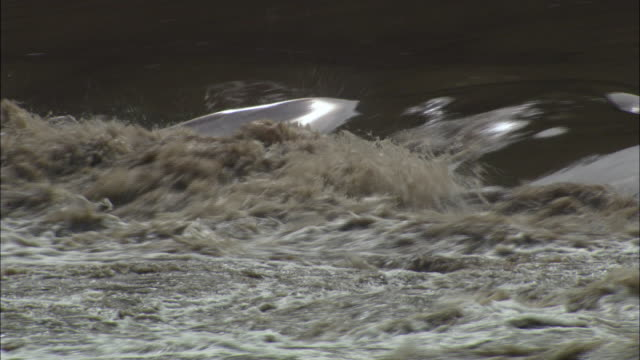 dirty river water moving rapidly with strong current, mexico, cu - imperfection stock videos and b-roll footage