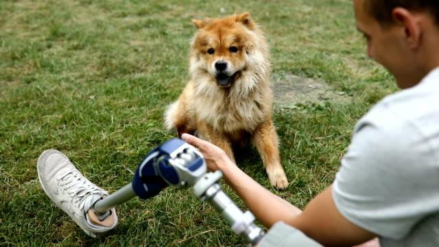 stockvideo's en b-roll-footage met arbeidsongeschiktheid man met chow hond - prothesen