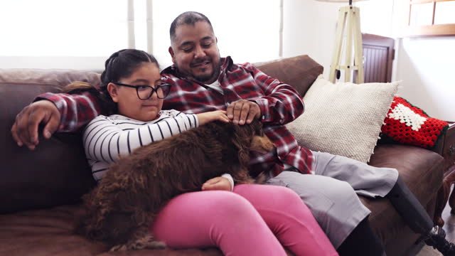 disabled father and daughter playing with long haired dachshund dog - overweight dog stock videos & royalty-free footage