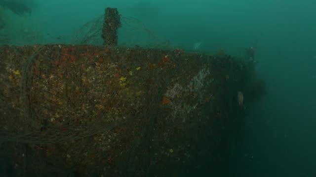 vídeos de stock e filmes b-roll de discarded ghost fishing net on a deep sea shipwreck in taiwan - rede de pesca objeto manufaturado