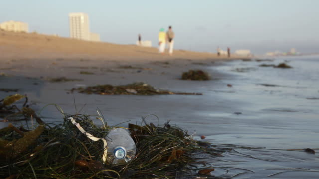 MS Discarded water bottle laying on beach in sea grass, couple walking in distance at sunset time / Venice Beach, Los Angeles, California, United States