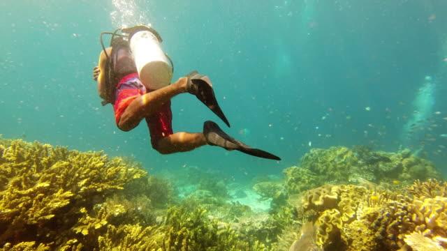 vídeos de stock, filmes e b-roll de descobrir um lado diferente da vida - mergulho autônomo