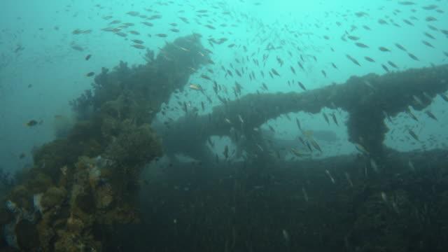 Discovering a sunken ship