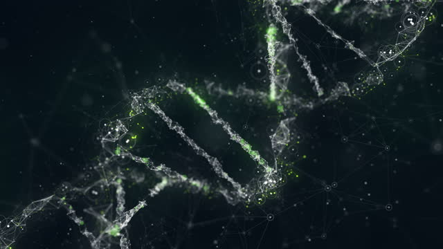 discovering dna - biomedical illustration stock videos & royalty-free footage