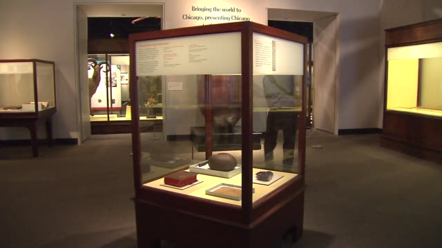 display case with coconut canteen catalog of exhibits amethyst and a dragonfly fossil from the 1893 chicago world's fair display case with items from... - chicago world's fair stock videos and b-roll footage