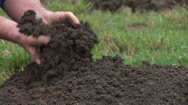 HD: Displaying The Soil