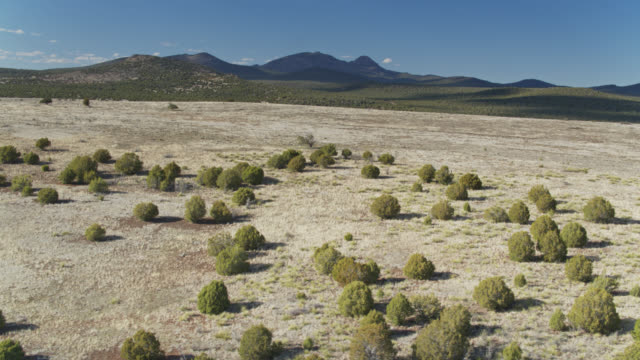 distant mountains rising above grassland in coconino national forest, arizona - aerial - national grassland stock videos & royalty-free footage