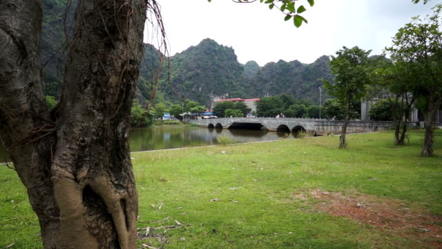distant view of the bridge in hoa lu with tree on foreground - traditionally vietnamese stock videos & royalty-free footage