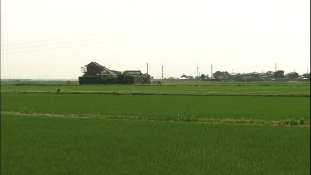 Distant view of the rural landscape of Jurokushima House standing in a rural area