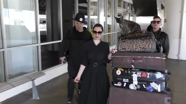 vídeos de stock, filmes e b-roll de dita von teese and her cat arriving at lax airport celebrity sightings on march 06 2017 in los angeles california - dita von teese