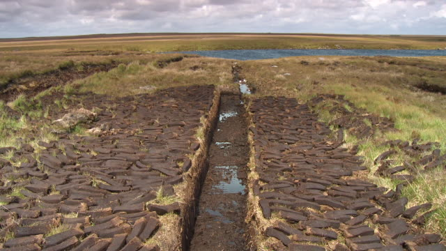 a ditch from which peat bricks were cut - bog stock videos & royalty-free footage