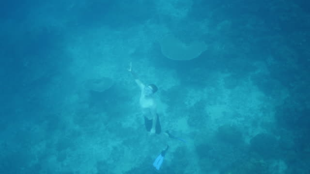 vidéos et rushes de plongeur à venir pour l'air - philippines