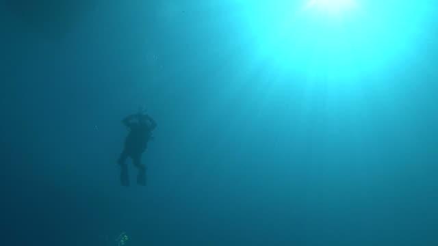 Diver descends. Maldives, Indian Ocean.
