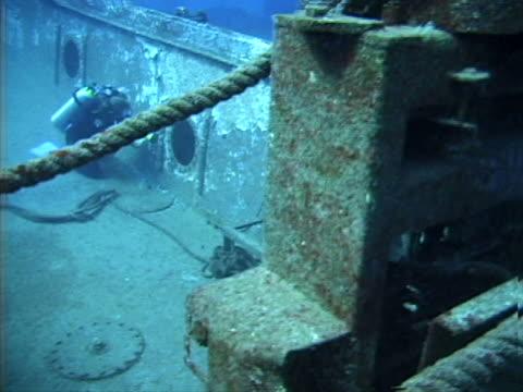 diver inspecting sunken wreckage - tierisches exoskelett stock-videos und b-roll-filmmaterial