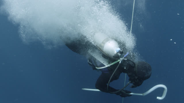 scuba diver leaps into blue ocean, fiji - escapism stock videos & royalty-free footage