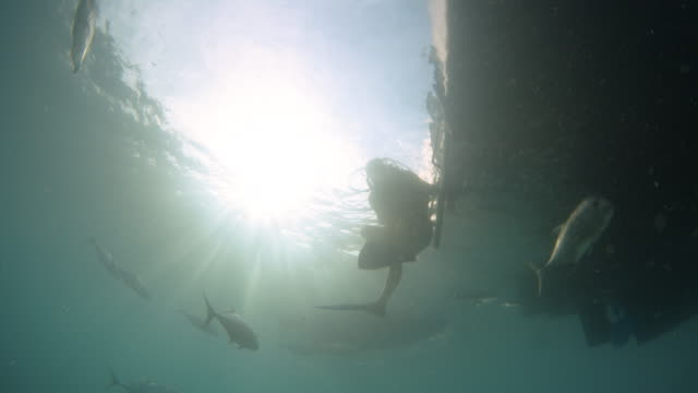a diver reaches for the boat's ladder - scuba diving stock videos & royalty-free footage