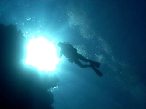 diver ws silhouetted swimming above reef - tauchgerät stock-videos und b-roll-filmmaterial