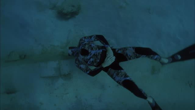 vidéos et rushes de slo mo ws ts diver swimming down to ocean floor where sharks swim / moorea, tahiti, french polynesia - moorea
