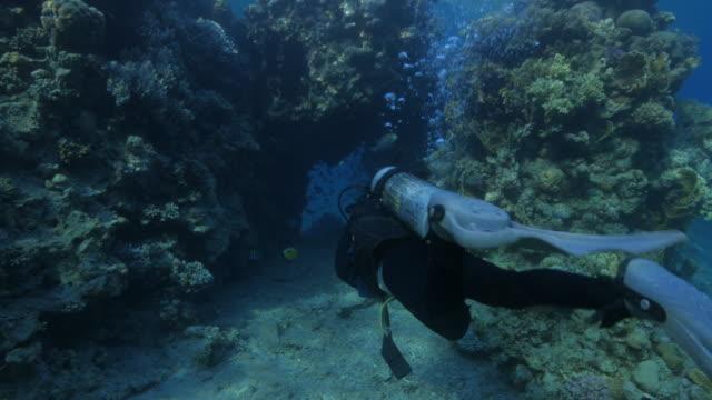vídeos de stock e filmes b-roll de diver swimming into a cave - mar vermelho