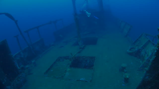 diver swimming on ship's deck of boga shipwreck (4k) - shipwreck stock videos and b-roll footage