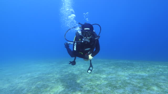 diver swimming underwater - aqualung diving equipment stock videos & royalty-free footage