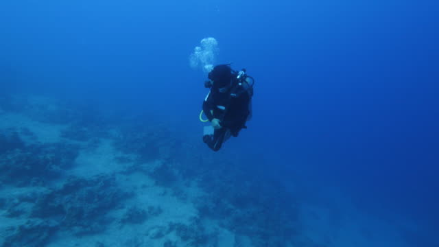 diver swimming - diving helmet stock videos and b-roll footage