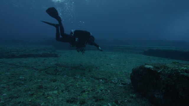 diver swims over ledges of yonaguni monument. japan - tauchgerät stock-videos und b-roll-filmmaterial
