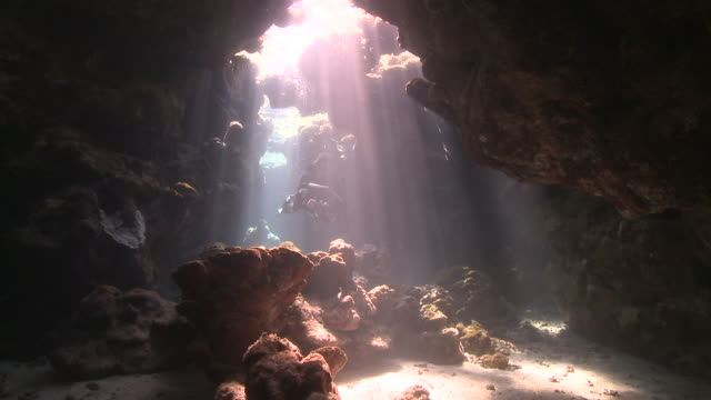 diver (liam allan) swims through coral cave into shafts of light  - underwater diving stock videos & royalty-free footage