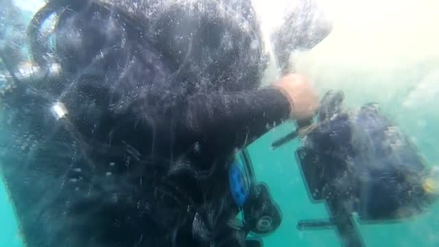 diver team shots intense mucilage under the marmara sea on tuesday, . the team consisting of ercan akpolat, serco eksiyan, ates evirgen and... - magnification stock videos & royalty-free footage