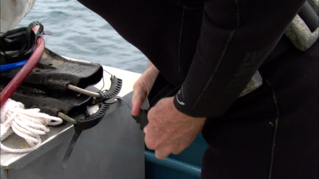 a diver tightens a weighted belt before he dons additional equipment. - belt stock videos & royalty-free footage