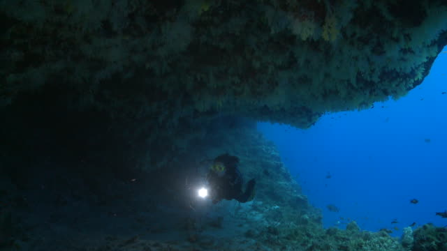 diver with torch swims into cavern, through frame, meemu atoll, the maldives - aqualung diving equipment stock videos & royalty-free footage