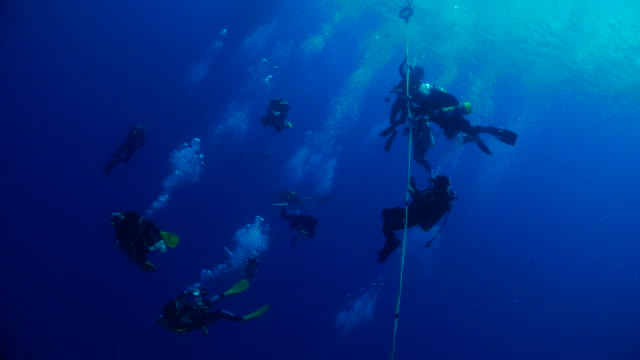 divers at deco stop after scuba diving - shipwreck stock videos & royalty-free footage