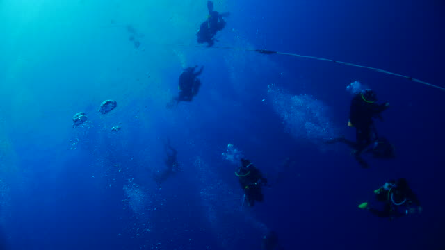 divers at safety stop during deep wreck diving - shipwreck stock videos and b-roll footage