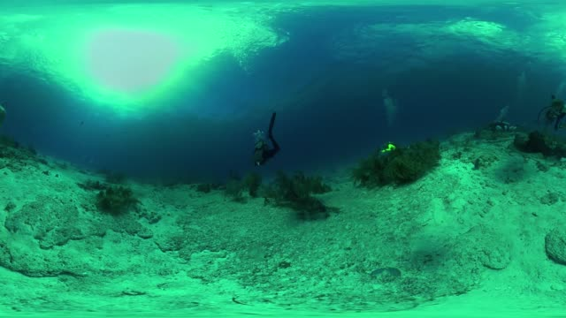 divers explore the depths off the coast of the us - equirectangular panorama stock videos & royalty-free footage