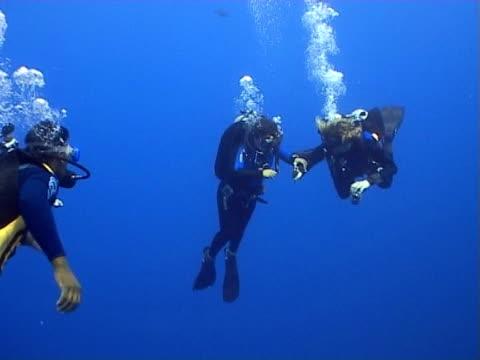 divers ws in blue open water - tauchgerät stock-videos und b-roll-filmmaterial