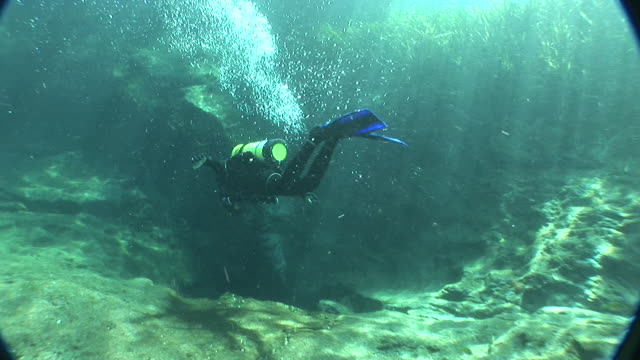 ms divers in underwater spring vent, rainbow river, florida, usa - süßwasser stock-videos und b-roll-filmmaterial