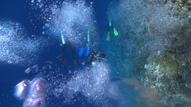 divers past coral wall with bubbles to camera - aqualung diving equipment stock videos & royalty-free footage