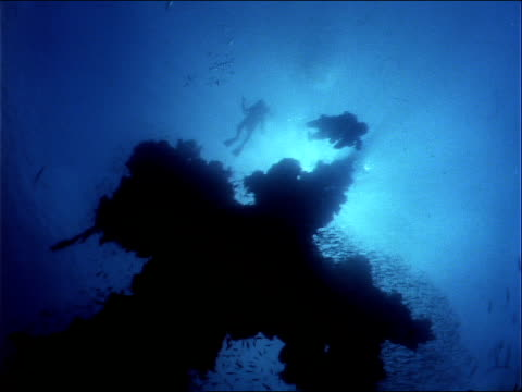 divers swim above sunken wreckage. - micronesia stock videos & royalty-free footage