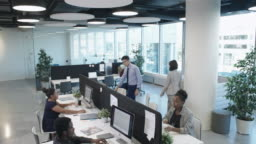 Diverse Business Team Working in Comfortable Office
