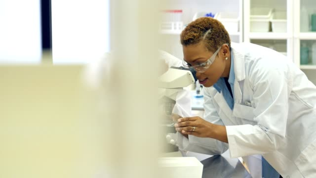 Diverse female chemists work together in a laboratory