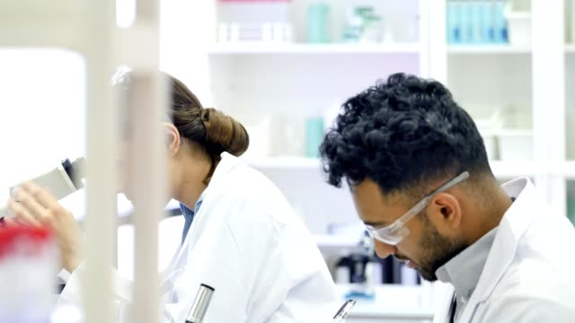 Diverse male and female chemist work on experiment together