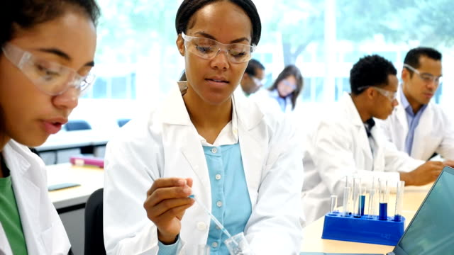 Diverse scientists work together in laboratory