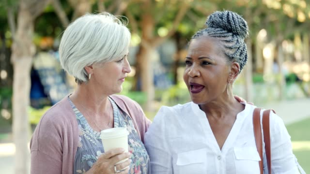 diverse senior female friends have conversation in city park - braided hair stock videos & royalty-free footage