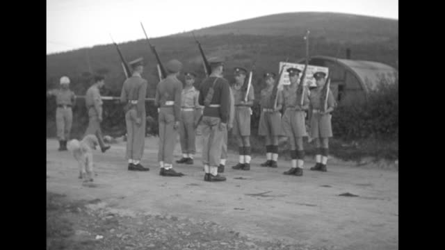 dividing line between angloamerican zone and yugoslav zone in trieste italy in 1946 / vs british troops change guard at the dividing line as dog... - 旧ユーゴスラビア点の映像素材/bロール