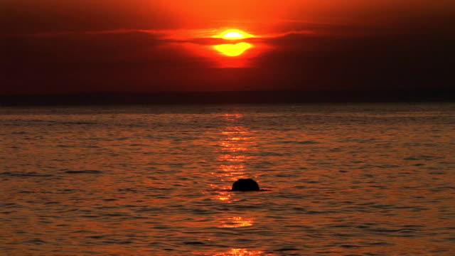 stockvideo's en b-roll-footage met hd: diving at sunset - cres kroatië
