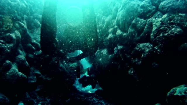 diving into deep sea. near surface - aqualung diving equipment stock videos & royalty-free footage