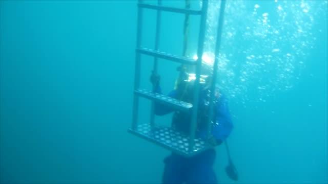 vídeos de stock, filmes e b-roll de mergulho autônomo - bolha estrutura física