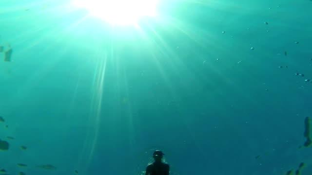 diving woman - below stock videos & royalty-free footage